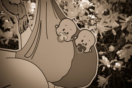 štorklja ob rojstvu otroka dvojčka
